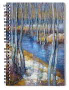 Spring River Thaw Spiral Notebook