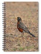 Spring Robin 2014 Spiral Notebook
