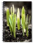 Spring Shoots Spiral Notebook