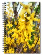 Spring - Sprig Of Forsythia Spiral Notebook