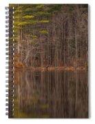 Spring Stillness Spiral Notebook