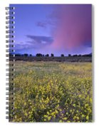 Spring Storm At Andalucia Spiral Notebook
