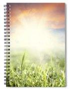 Spring Sun Spiral Notebook