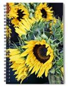 Spring Sunflowers Spiral Notebook