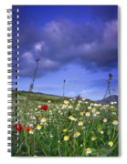 Spring Sunset Windy Days Spiral Notebook