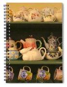 Spring Teapots  Spiral Notebook