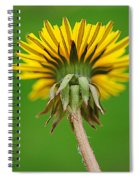 Spring To Life Spiral Notebook