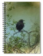 Spring Tree And Crow Spiral Notebook