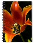Spring Tulip Spiral Notebook