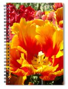 Spring Tulip Flowers Art Prints Yellow Red Tulip Spiral Notebook