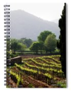 Spring Vines In Provence Spiral Notebook