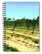 Spring Vineyard Ll Spiral Notebook