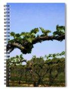 Spring Vineyard Spiral Notebook
