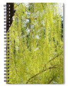 Spring Weeping Willow Spiral Notebook