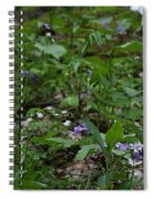 Spring Wildflowers Along Panther Branch Trail Frozen Head Tennessee State Park Tennessee Spiral Notebook