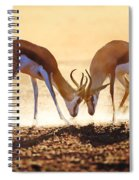 Springbok Dual In Dust Spiral Notebook