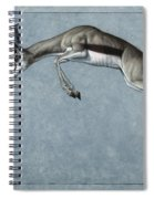 Springbok Spiral Notebook