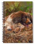 Springer Spaniel 2 Spiral Notebook