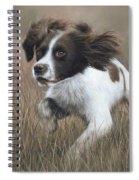 Springer Spaniel Painting Spiral Notebook