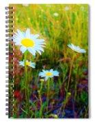 Springing Daisy's Spiral Notebook