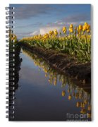 Springs Beautiful Reflection Spiral Notebook