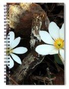 Spring's Bloom Spiral Notebook