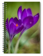 Springs Blossoms Spiral Notebook