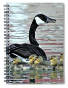 Spring's First Goslings Spiral Notebook