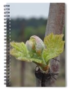 Spring In The Vineyard Spiral Notebook