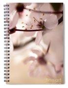 Springtime Blossom Spiral Notebook