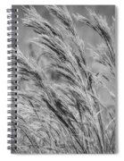 Springtime In The Field - Bw Spiral Notebook