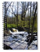 Springtime In The Mountains Spiral Notebook