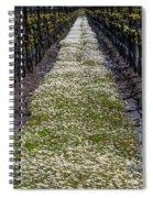 Springtime In The Vineyards Spiral Notebook