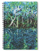 Springtime In Wekiva Spiral Notebook