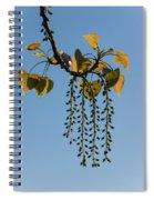Springtime Jewelry Spiral Notebook