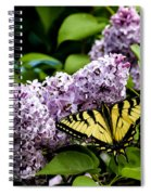 Springtime Lilac And Butterfly Spiral Notebook