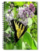 Springtime Moments- The Butterfly And The Lilac  Spiral Notebook