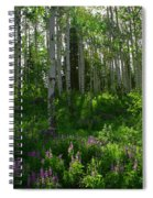 Springtime On The Grand Mesa Spiral Notebook