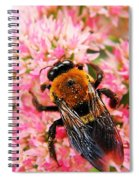 Sprinkled With Pollen Spiral Notebook