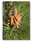 Sprintime Pine Spiral Notebook