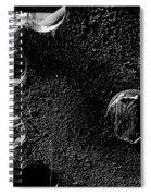 Sprocket Spiral Notebook