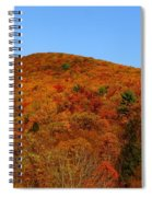 Sproul State Forest Spiral Notebook