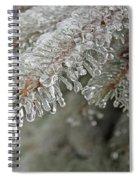 Spruce Under Glass Spiral Notebook
