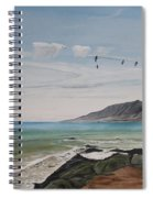 Squadron Of Pelicans Central Califonia Spiral Notebook