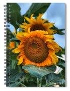 Squamish Sunflower Portrait Spiral Notebook