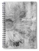 Square Series - Black White 5 Spiral Notebook