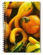 Squash Spiral Notebook