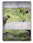 Squirrel And Rosebush Spiral Notebook