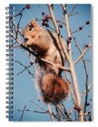 Squirrel Berry Spiral Notebook
