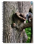 Squirrel Guarding Watering Knot Spiral Notebook